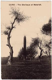 vintage postcard of egypt