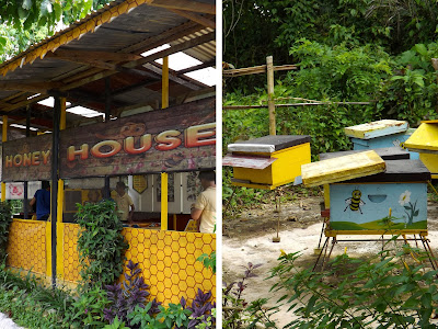 Mango Tours Tagaytay Paradizoo butterfly sanctuary