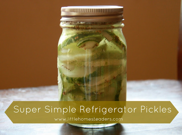 Simple Refrigerator Pickles - No Canning Required