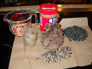 peanut butter pine cones for birds