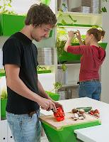 Un ecosistema en tu cocina!