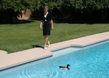 Estefan the duck.