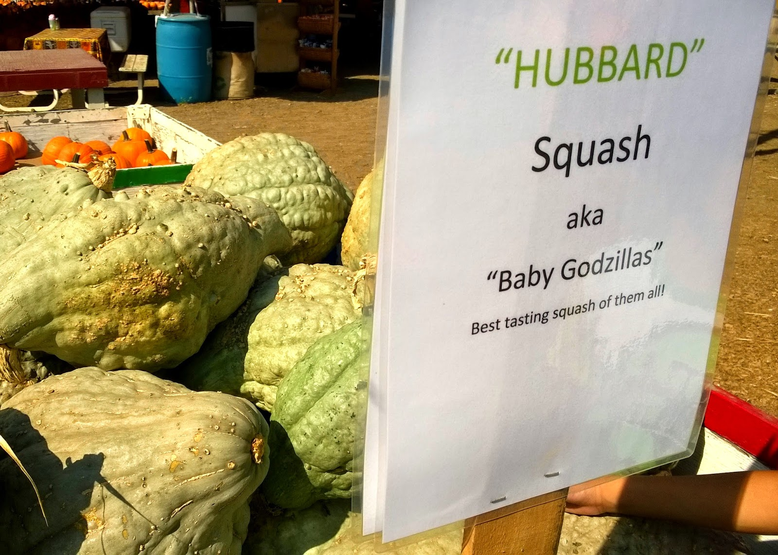 Tapia Bros., Hubbard Baby Godzillas