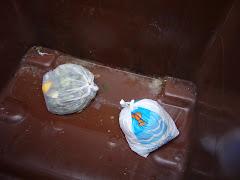 Bideo sobre utilizacion del 5º contenedor en Donostia