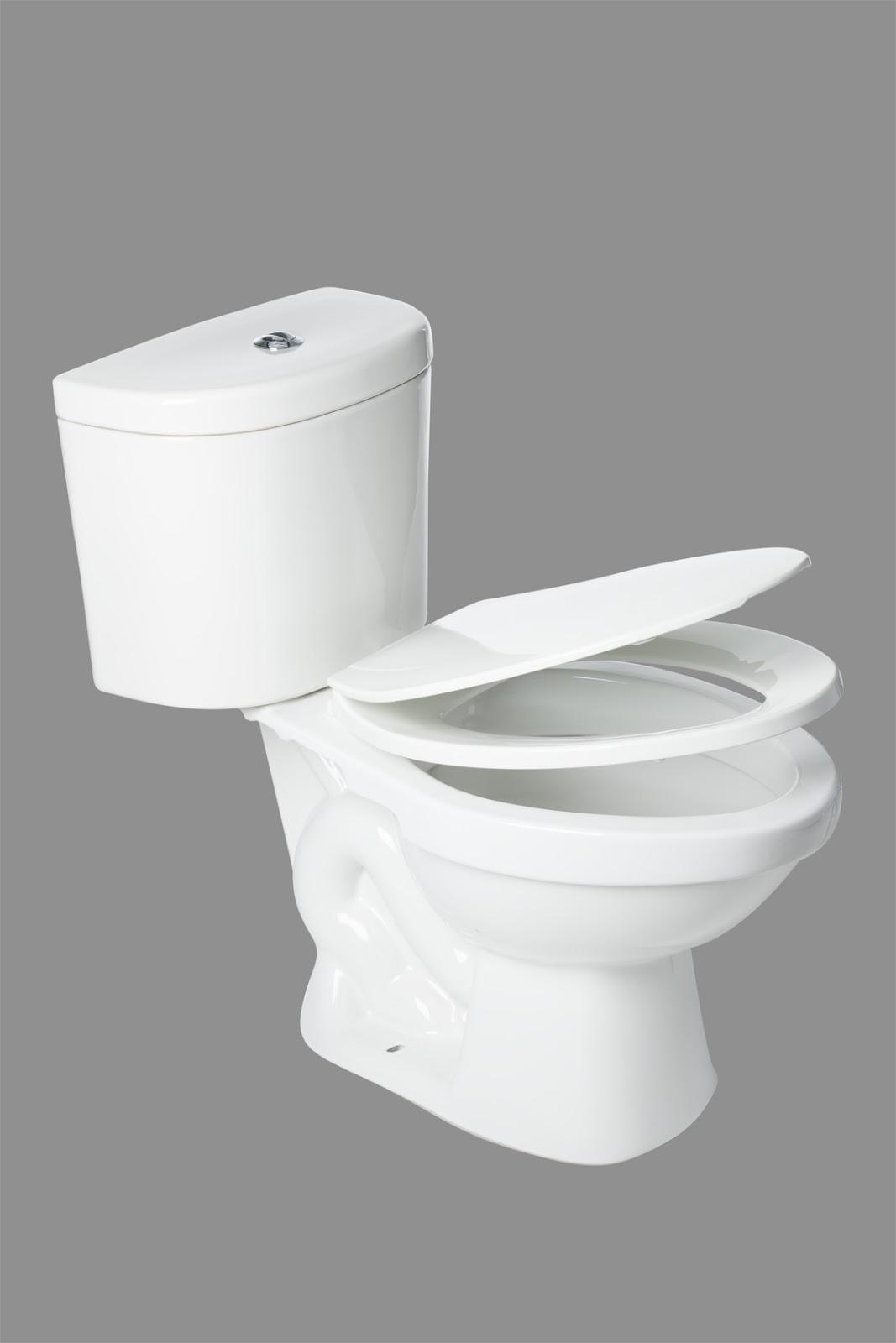 Servidor porcelana sanitaria sanitario avellano plus for Porcelana sanitaria
