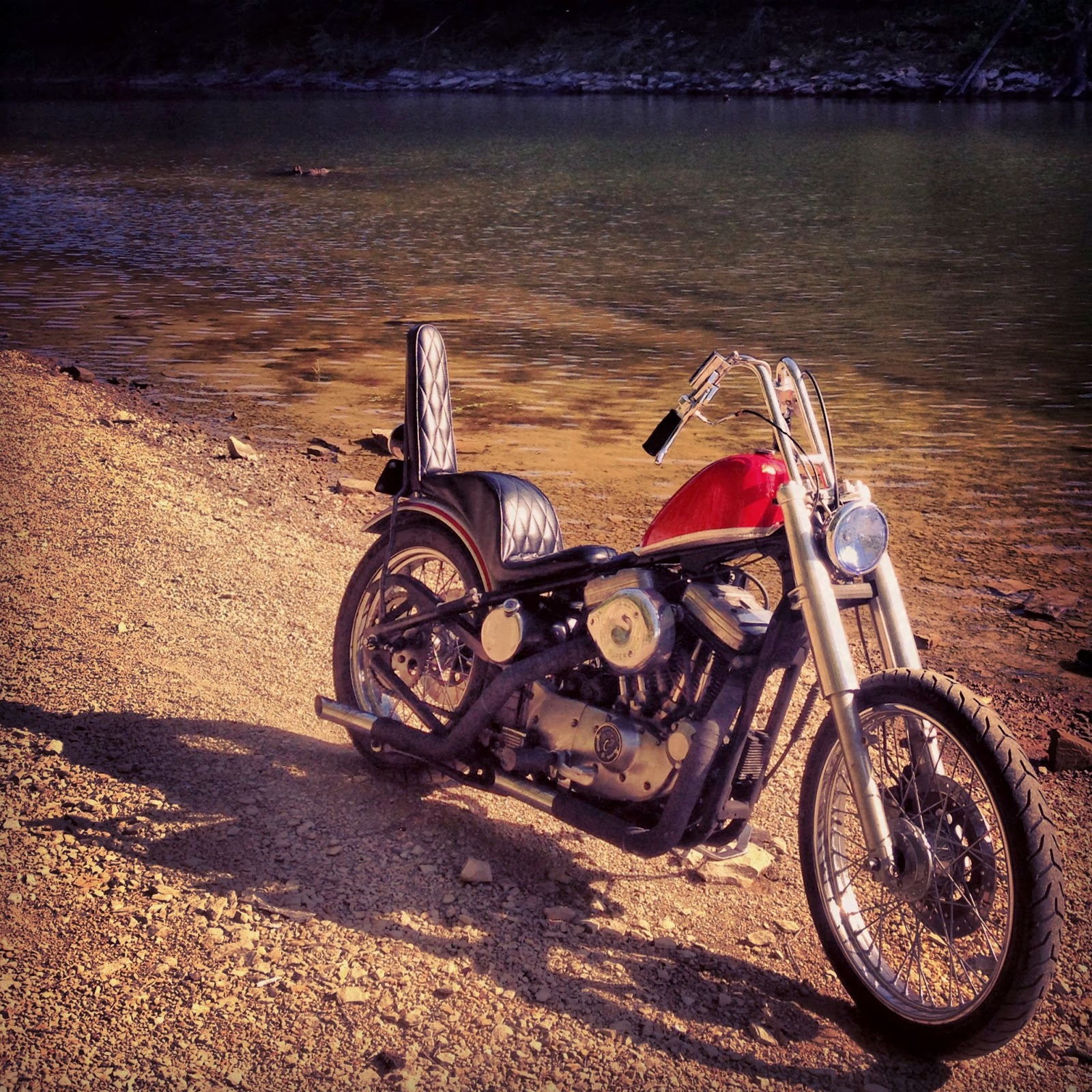 list of synonyms and antonyms of the word  sportster chopper
