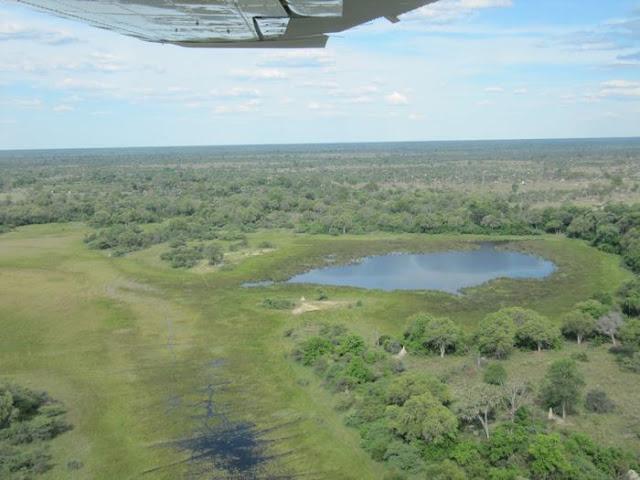 vuelo en avioneta, africa desde el aire, delta del Okavango, parques Botsuana