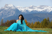 Hansika Motwani latest saree photos stills Gallery-thumbnail-12