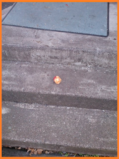 Half eaten apple sitting in the center of the cement porch step.