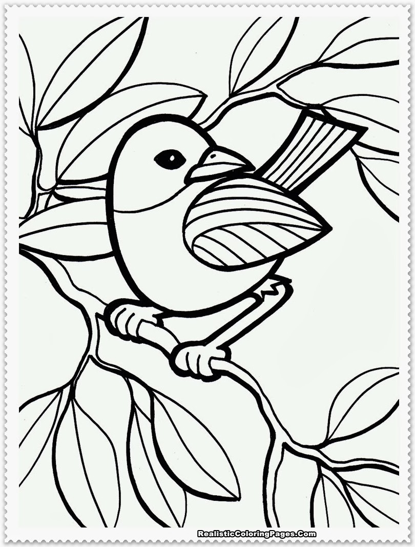 Bird coloring pages realistic realistic coloring pages for Bird coloring pages to print
