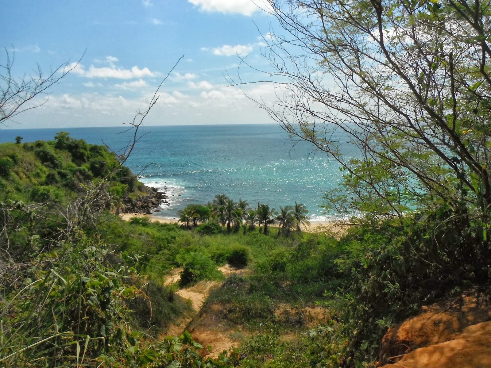 Ecoturismo m xico playa coral puerto escondido oaxaca - Viajes a puerto escondido ...