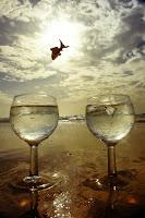 Ser libre o sentirse libre