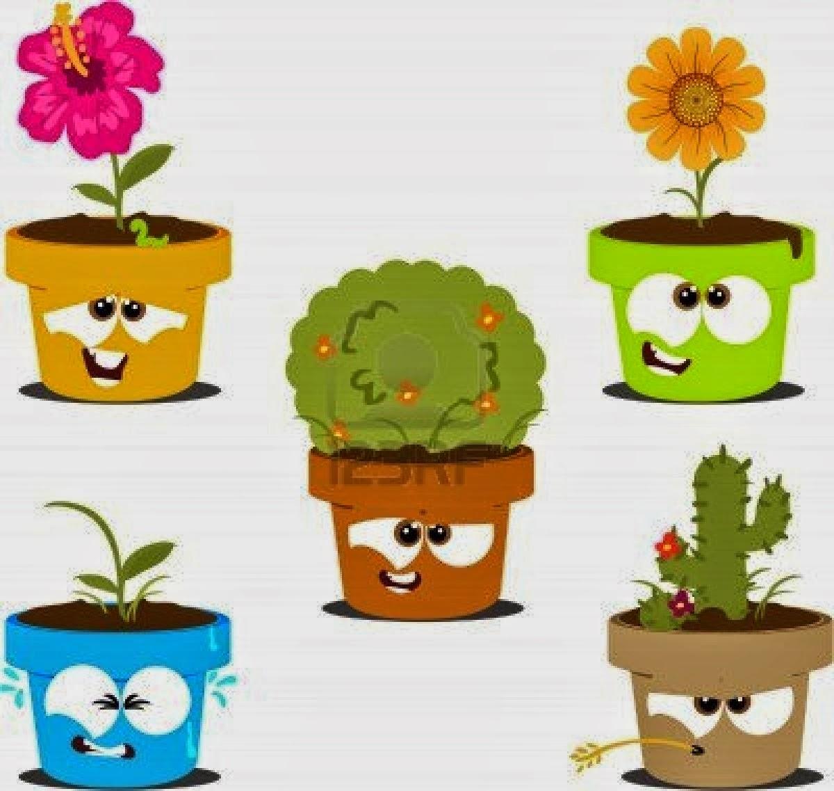Blogg ciencias naturales seres vivos las plantas su for Imagenes de plantas en macetas