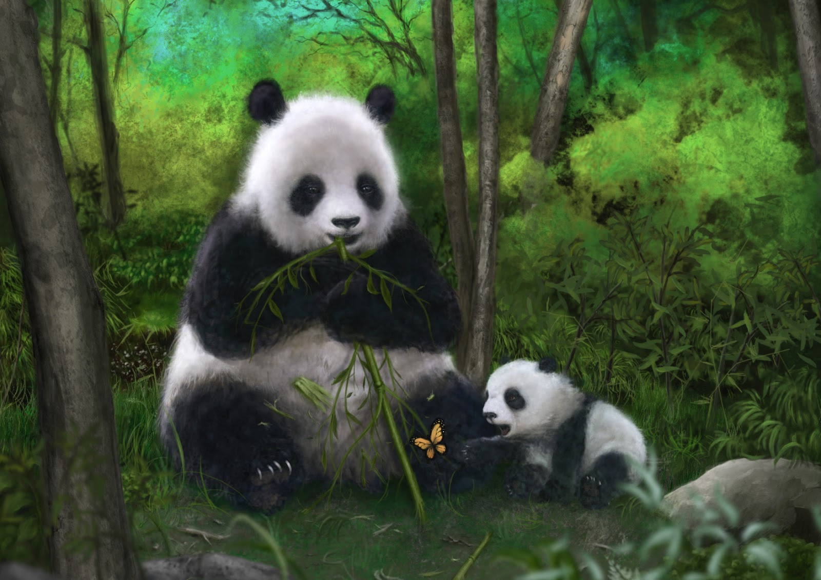 Little panda: a beautiful animal that is dying out 37