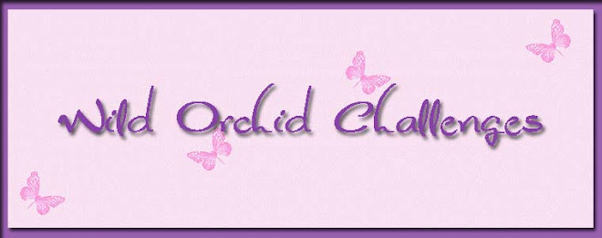 Wild Orchid challenges elke week
