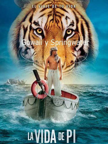 Prosigue en tribunales el enfrentamiento Springwater-Gowaii