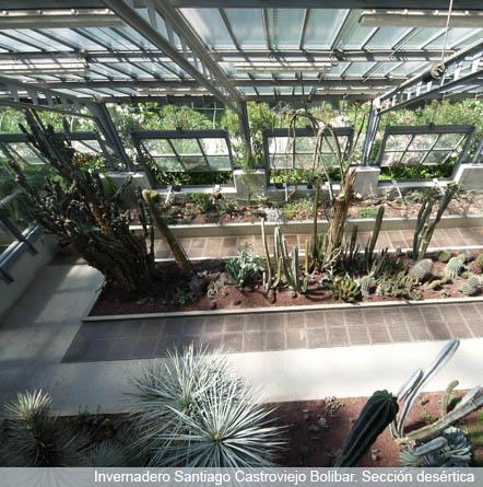 Invernablog parques de madrid jard n bot nico de madrid for Precio entrada jardin botanico madrid
