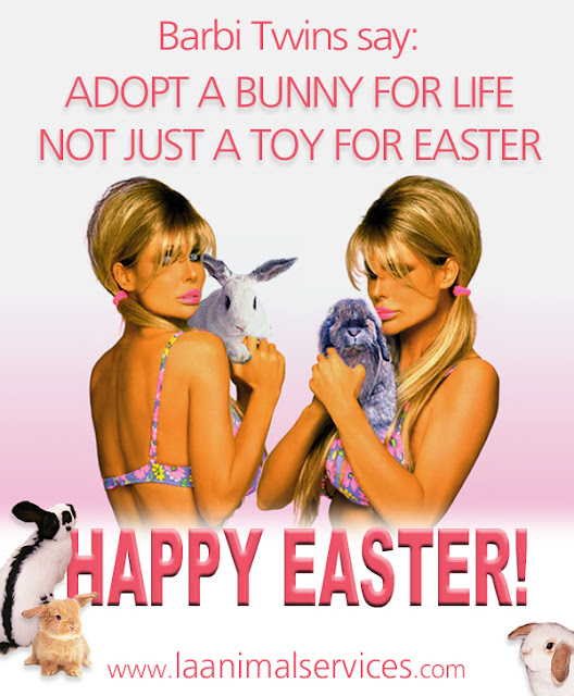 The Barbi Twins' Easter Message Adopt a Bunny