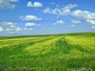 http://kitabistann.blogspot.com.tr/2013/04/feeri-nedir-feeri-kelimesinin-anlami.html