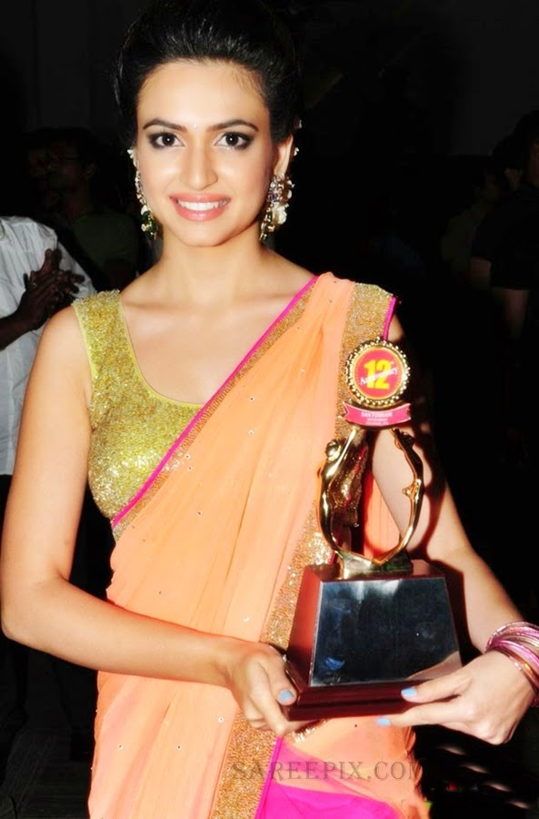 Kriti-kharbanda-saree-with-award