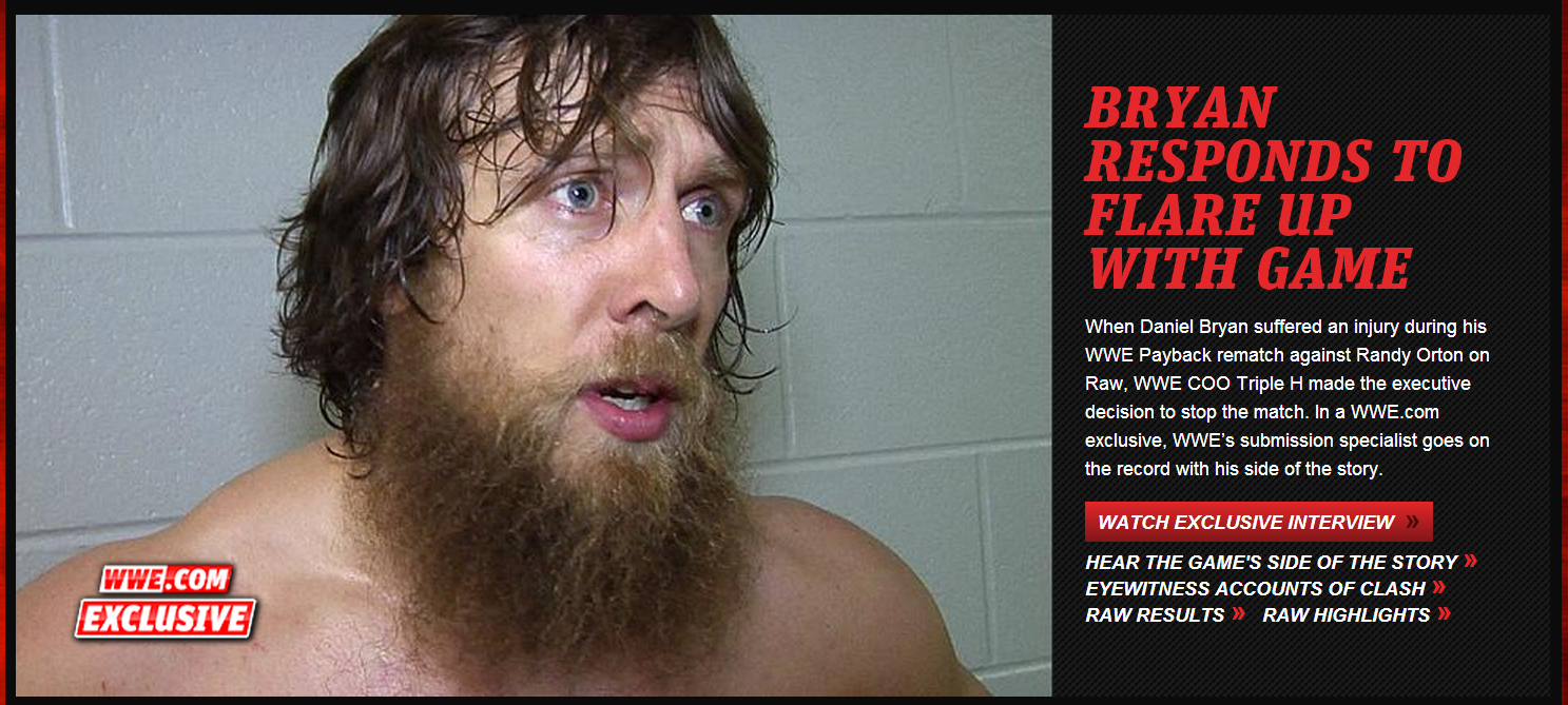 WWE Daniel Bryan YES! NO!