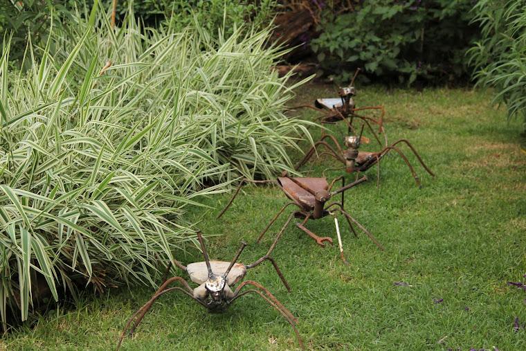 Caminito de hormigas