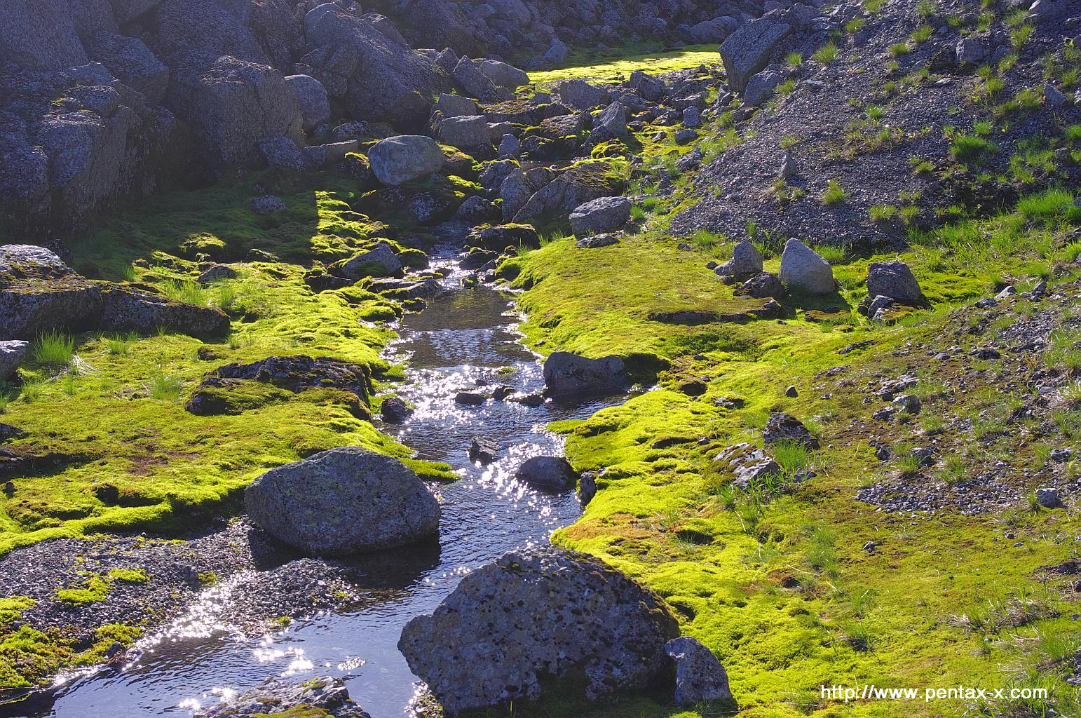 Ручей в Зверином ущелье