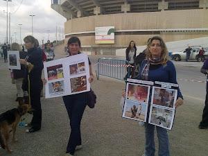 Acto contra los circos con animales y pegadas de carteles: (13-11-2011)