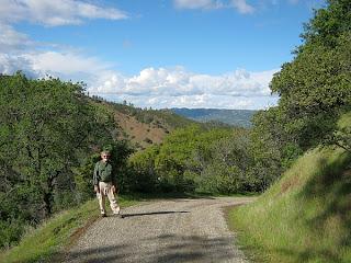 Pierce Canyon Falls Trail