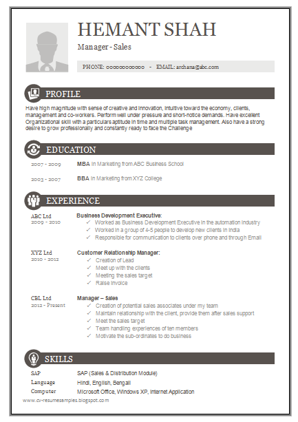 Free Download Link One Page Excellent Resume Sample For MBA   Sales U0026  Marketing