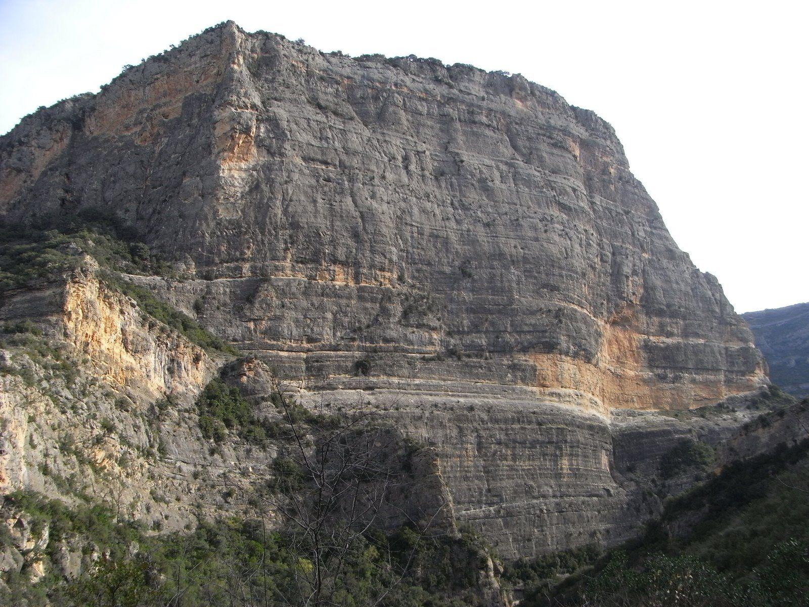 Roca Regina
