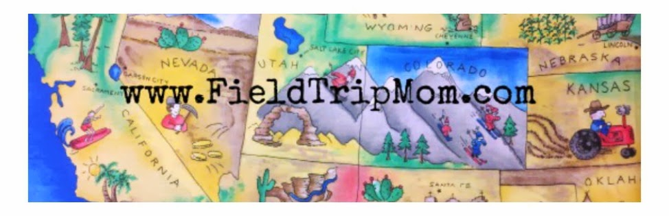       fieldtripmom.com