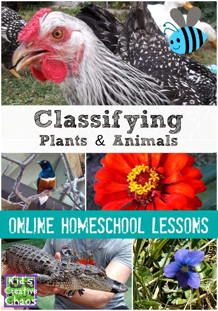 Free Online Homeschool Science Lesson: Classifying Plants and Animals Activities