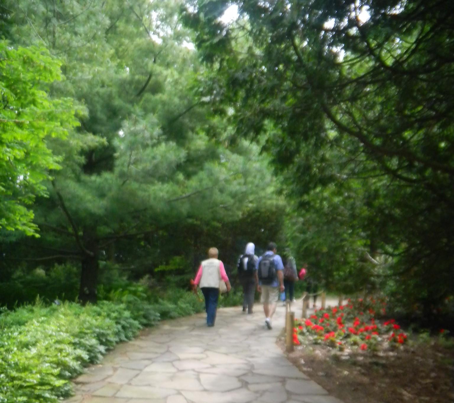 El jardin botanico de montreal for Chino el jardin
