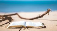 Que lire cet été ? Voici des idées !