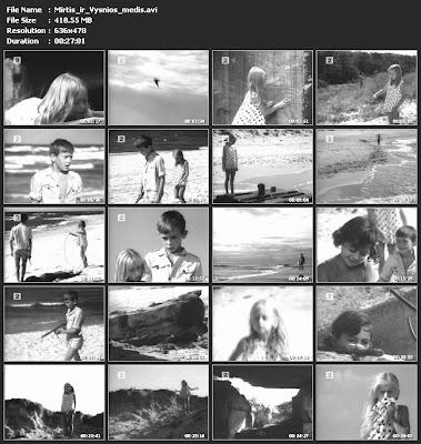 Mirtis ir vyšnios medis (1968)