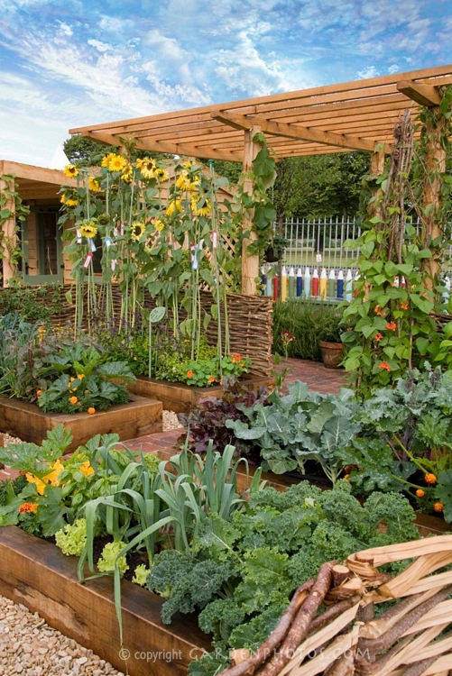 Backyard Raised Vegetable Garden Design : little work is required and then you can reap your rewards
