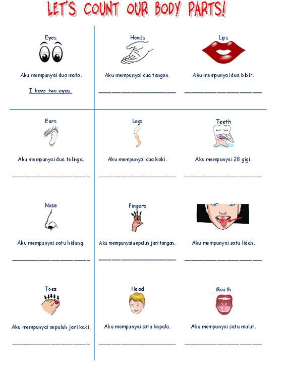 Materi Belajar Bahasa Inggris Tema Quot Body Parts Quot Belajar Membaca Menulis