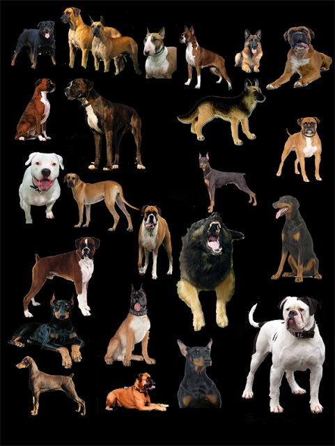 cut out dogs #1b