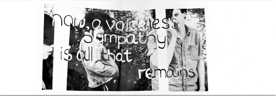 voiceless sympathy