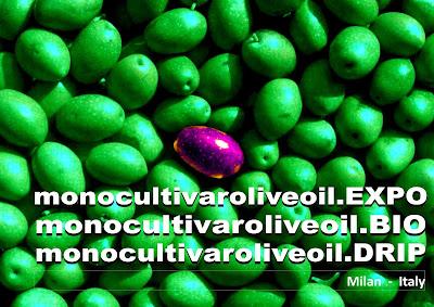 http://www.monocultivaroliveoil.com/iscrizioni-2/
