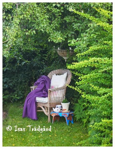 Avskild vrå i trädgården !