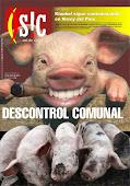 DESCONTROL COMUNAL