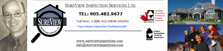 Professional Building Home Inspector, Home Inspection Services