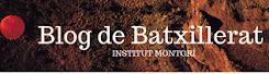 Blog de Batxillerat INS Montgrí