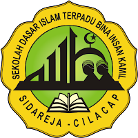 Logo SDIT 2013
