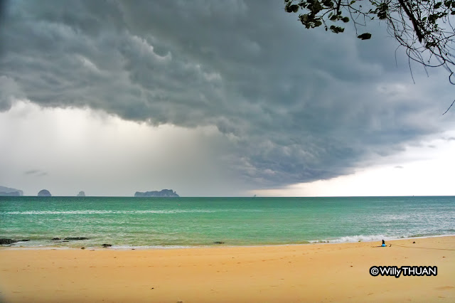 Things to Do in Phuket When it Rains