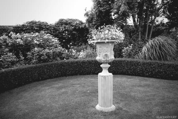 aliciasivert, Alicia Sivertsson, France, Normandy, Les Jardins d'Angelique, garden, gardens, flowers, roses, rose, Frankrike, Normandie, trädgårdar, trädgård, blommor, rosor, ros