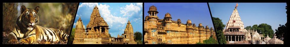 Madhya Pradesh National Park