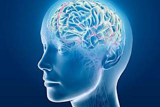 حقائق مدهشة عن العقل البشري